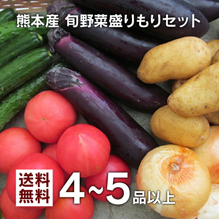 【 送料無料 】 九州 熊本産 旬の野菜盛りもりセット! 旬の野菜を味わい尽くしたい方へ、一品の量が多くたっぷり楽しめる4〜5品セットです! 【 九州 熊本 野菜 旬 セット 詰め合わせ 食材 グルメ ご当地 お取り寄せ 大盛 ギフト 母の日 父の日 お中元 お歳暮 贈答 】