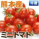 熊本県宇城市産ミニトマト