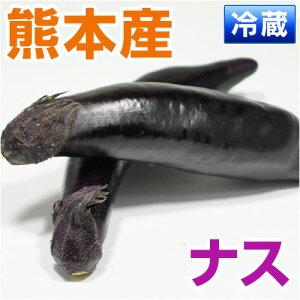 柔らかい果肉は、甘みがあり、さまざまな料理に利用しやすい■熊本県産 ナス■ (熊本宇城・宇...