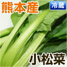 熊本県産小松菜