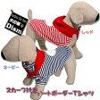 犬服 スカーフ付きハートボーダーTシャツ(超小型犬・猫用)【犬の服2点購入でメール便送料無料】ドッグウェア