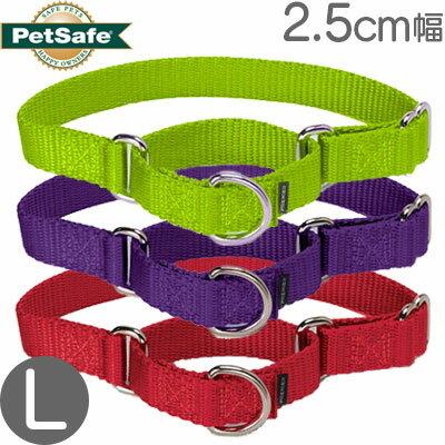 PetSafe『プレミアカラーLサイズ』