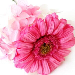 【限定クーポン有】ペットお悔やみプリザーブドフラワーローズガーベラあじさいディアペットオリジナルピンク白ホワイト供花プリザフラワーブリザードフラワーかわいいおしゃれペットロスバラ薔薇お花花贈り物お供えギフト国産お悔み