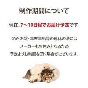 【ペット墓】写真彫刻お庭用のペット墓PetcotiペットコティLサイズ御影石本格ミニ骨壷分骨かわいい犬猫ペット用墓石位牌ペット名入り写真入りガーデン