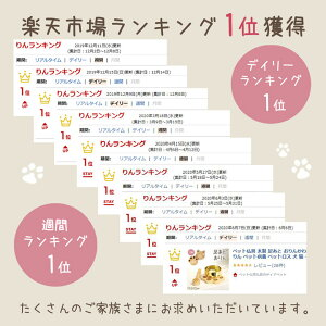 ペット仏具木製足あとおりんおりんペットメモリアルペットおりんペット供養ペットロス犬猫肉球オリジナル