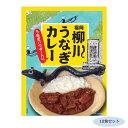 【代引き・同梱不可】ご当地カレー 福岡 柳川うなぎカレー(うなぎパウダー入り) 10食セット