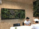 RattanFrame(大)【デコプラ】 壁面緑化 造花 ウォールグリーン 壁面 緑化 DIY パネル アート 壁付け ...