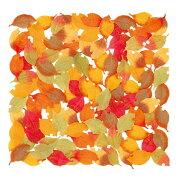 ミニ枯れ葉セット(約100枚/パック)【秋のデコレーション・装飾・落ち葉】