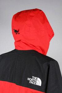 ノースフェイス メンズ マウンテンライトジャケット Mountain Light Jacket フィアリーレッド【正規取扱店】