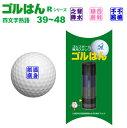 ゴルフボールスタンプ「ゴルはん」四熟語RシリーズNo39〜48メール便ご利用で送料は無料です(宅配便は有料です)ゴルハン・ごるはん