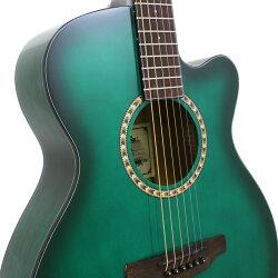ARIATG-1SGR(シースルーグリーン)アリアアコースティックギターアコギ