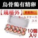 【訳あり】 烏骨鶏卵 10個入り 家庭用 【モールドケース入り】食用
