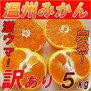 【送料無料】減農薬 温州みかん 訳あり 5kg 規格外 家庭用 みかん 激安