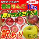 りんご 訳あり 葉取らず 10kg 長野産 リンゴ 送料無料 サンふじ 蜜入り