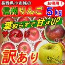 長野産 葉とらず りんご 訳あり 5kg 送料無料 リンゴ サンふじ 蜜入り