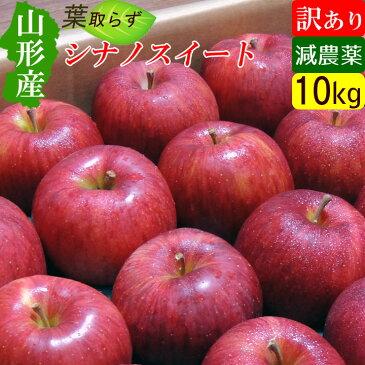 【送料無料】 山形 ステビア農法 葉取らず シナノスイート りんご 訳あり 10キロ 規格外 家庭用 高糖度