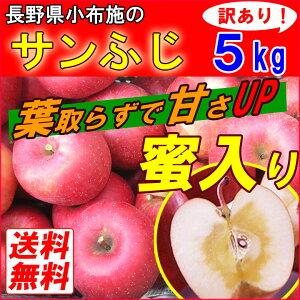 【レビューでおまけ付♪】【品種選べます】小布施 サンふじ りんご 林檎 完熟 リンゴ 訳あり さ...