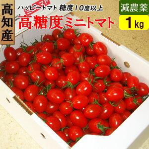 高知県 完熟 ハッピートマト (高糖度ミニトマト) 1kg 甘くておいしい!送料無料