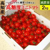 高知県 完熟 ハッピートマト (高糖度ミニトマト) 2kg 甘くておいしい!送料無料