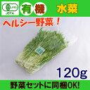 オーガニック 有機 水菜 120g 無農薬 有機野菜