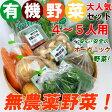 【送料無料】 無農薬 有機野菜 セット 10品目 オーガニックの野菜セット