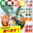 【送料無料】 無農薬 有機野菜セット 7品目 オーガニック 有機栽培 JAS認定