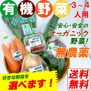 【1品ずつ個包装】無農薬 有機野菜セット 7品目 オーガニック 有機栽培 JAS認定 冷蔵便