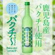 パクチーすぴりっと 500ml / 数量限定 / パクチー / 鹿児島県産 / 麦焼酎