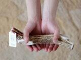 【送料無料!】エゾシカの角 無添加 おやつ【XLサイズ】deerdear dog gum / 鹿の角ガム 鹿の角おやつ 天然素材 鹿の角犬