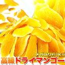 天然生活 【業務用】高級ドライマンゴーメガ盛り1kg≪常温≫