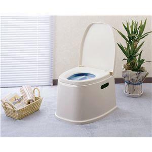 その他 幸和製作所 樹脂製ポータブルトイレ テイコブポータブルトイレ PT01 ds-1550544