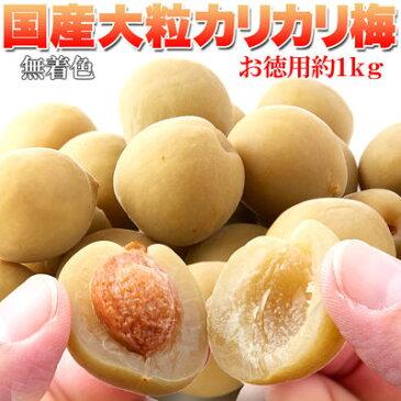天然生活 国産豊後梅100%使用。無着色☆お徳用大粒カリカリ梅500g SM00010325
