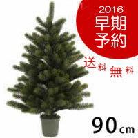 cmPLASTIFLOR クリスマスツリー クーポン PLASTIFLOR プラスティフロア・ドイツ