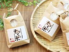 食品サンプルパーツ工作に!本物のお米にそっくり過ぎる米(200g)