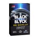 ソフト99 SOFT99 99 BLACKBLACK ブラックブラック L-55 02082 | タイヤ 艶出し クリーナー タイヤワックス 黒 コーティング剤 タイヤ用 洗車 洗車用品 車用品 おすすめ 簡単 車 艶 汚れ防止 超耐久 ツヤ出し つや出し タイヤコート剤