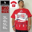 大きいサイズ メンズ b-one-soul-広島東洋カープ×DUCK DUDEパネル切替半袖Tシャツ(メーカー取寄)3L 4L 5L 6L キャラクター ビーワンソウル 広島