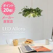 LED_Alloro_pendant_lamp