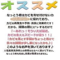 【カビ対策・カビ防止・防カビバイオ】つめ替えなっとう君5個セット【カビ対策】