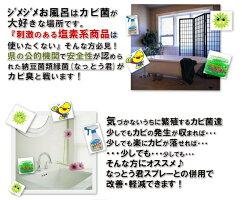【カビ対策・カビ防止・防カビバイオ】オススメ