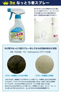 カビ納豆菌