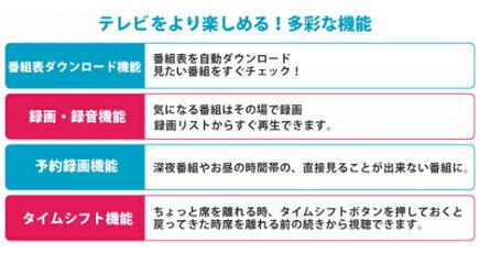 【送料無料】【数量限定】■PC専用ワンセグチューナーLT-DT306■パソコンで、ワンセグテレビが見れる!
