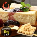 チーズケーキ 訳あり バー スティック 1kg(500g×2箱) 取り寄せ チーズケーキバー [送料無料]
