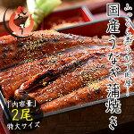 うなぎ蒲焼き国産特大サイズ200g×2尾ウナギ鰻[送料無料]