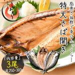 さばサバ鯖干物特大サイズ約250〜300g×3尾