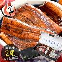 うなぎ 蒲焼き 国産 無頭 鹿児島県産 大サイズ 165g前後×2尾 鰻 ウナギ