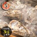 カキ 牡蠣 缶焼き かき 3kg(殻付き 約32〜42個)軍...