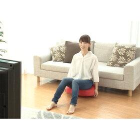 床に置いて、座るだけ!美姿勢&振動でインナーマッスルを目覚めさせ、ラクに効率よくスリムを目指します。