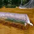 特売 約0.6mm目 目の細かい菜園用防虫ネット 小ロール 日本製 1.8m×20m