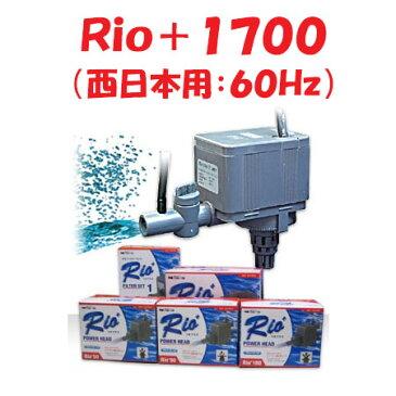 カミハタ Rio+1700 水中ポンプ (西日本用:60Hz) リオプラス