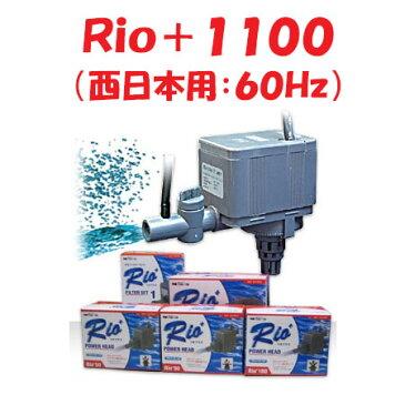 カミハタ Rio+1100 水中ポンプ (西日本用:60Hz) リオプラス